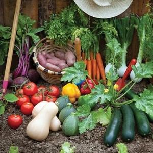 Снимка за категория Зеленчуци