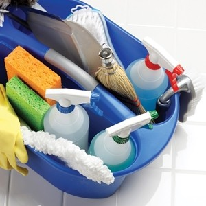 Снимка за категория Почистващи препарати